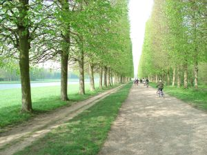 Bike path at Versailles, France