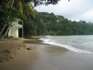 Beach in Charlottesville in Tobago